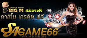 ซากาเมะ 66